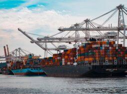 Import Export Services in Dubai